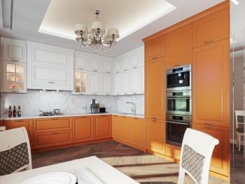 Пример кухни №13